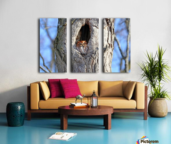 Enjoying The Winter Sun Split Canvas print