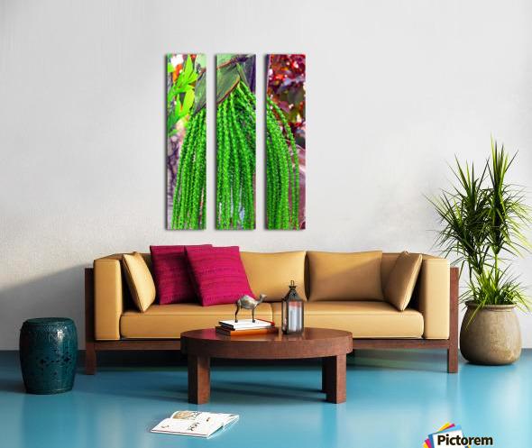 Plant Dreads Split Canvas print