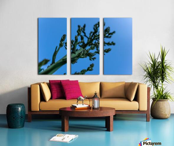 Yucca Skies Split Canvas print
