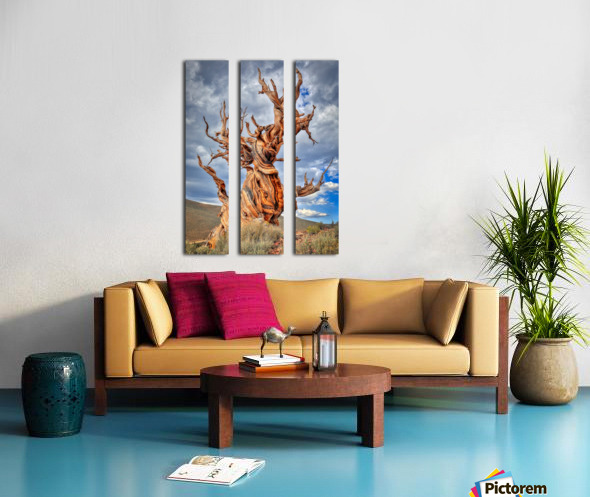 Great Witness of Time Split Canvas print