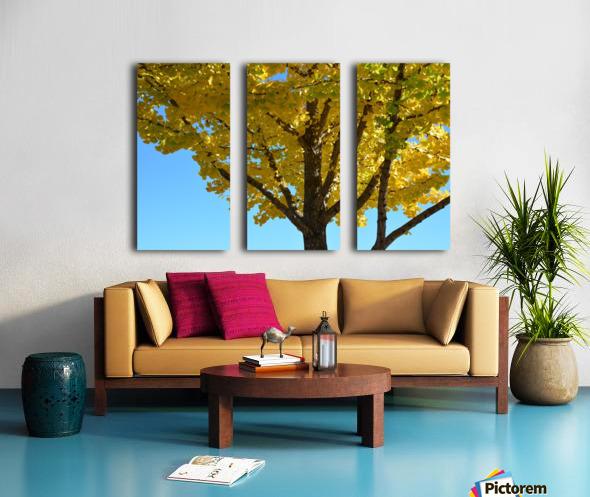 Yellow Fall Foliage Photograph Split Canvas print