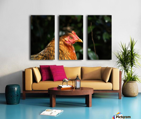 You Turkey Split Canvas print