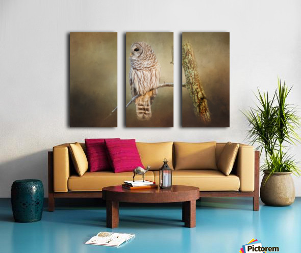 Whos There Split Canvas print