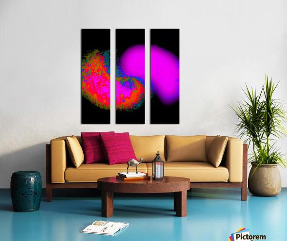 Organic Synergism 41 Split Canvas print