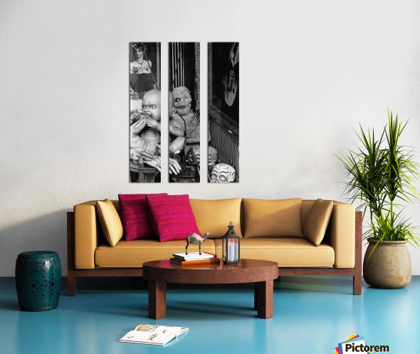 State of the Union Split Canvas print