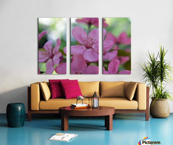 Floral Photography  Split Canvas print