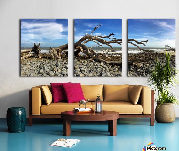Driftwood Beach Panorama 101 Split Canvas print