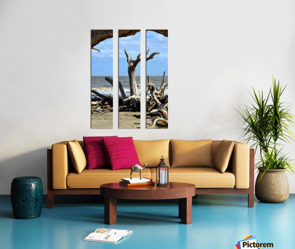 Driftwood Beach Uplifting Split Canvas print