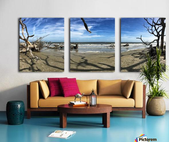 Driftwood Beach Panorama Shadows Split Canvas print
