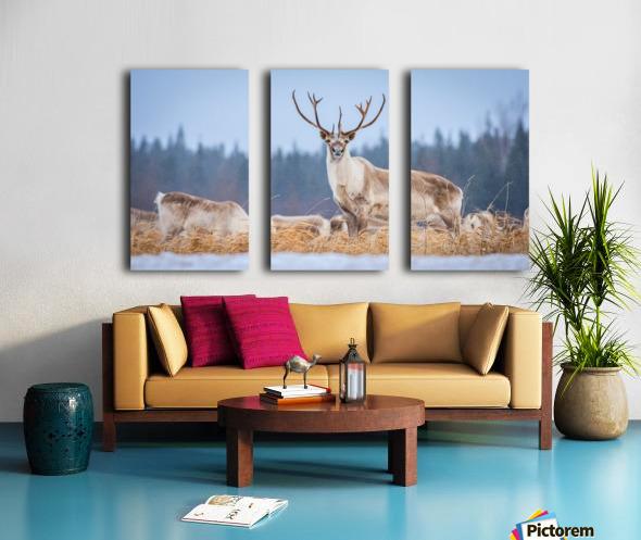 Majestic Split Canvas print