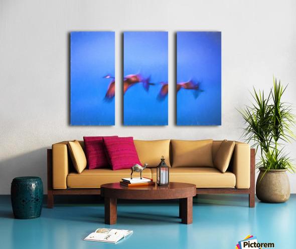 Flight Split Canvas print