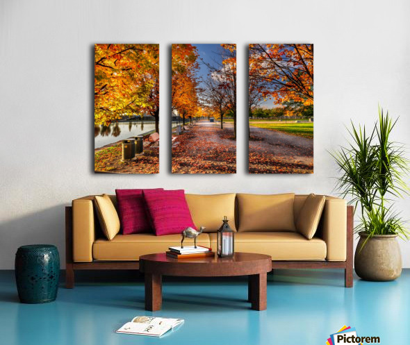 _TEL6366 Edit Split Canvas print