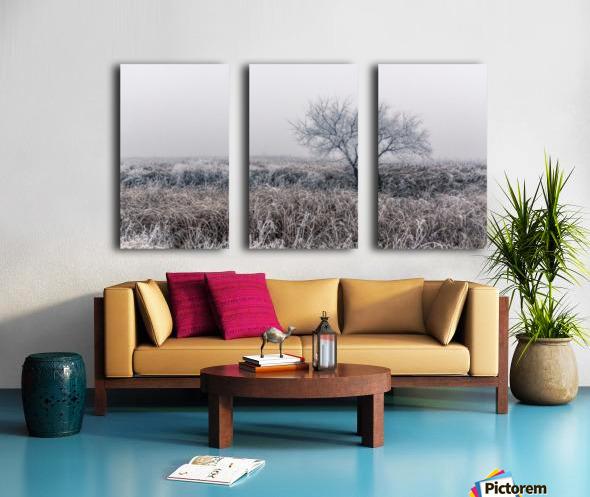 Hoar Frost Split Canvas print