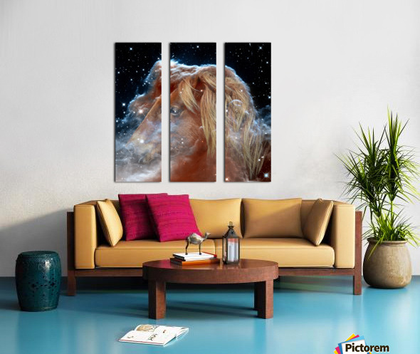 Horsehead Nebula with Horse Head in Space Split Canvas print