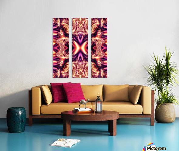 Aenima Split Canvas print