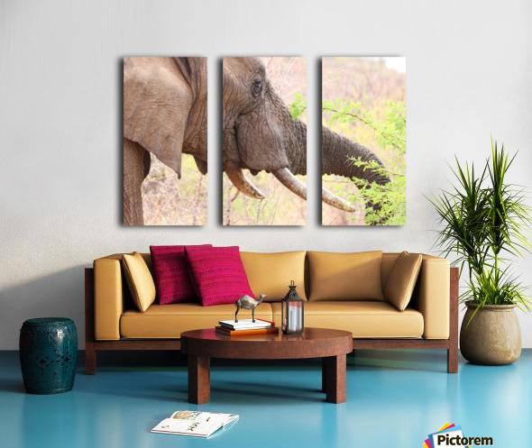 Elefant 6770 Split Canvas print