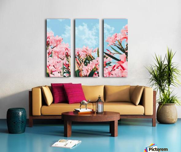 Blush Blossom II Split Canvas print