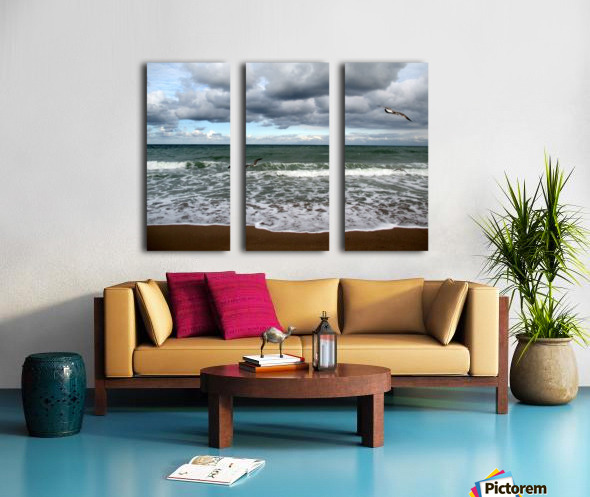 A sense of freedom by the beach Split Canvas print