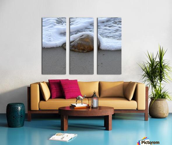 Jellyfish Split Canvas print