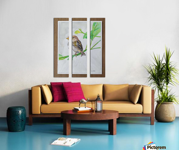 Sparrow_DKS Split Canvas print