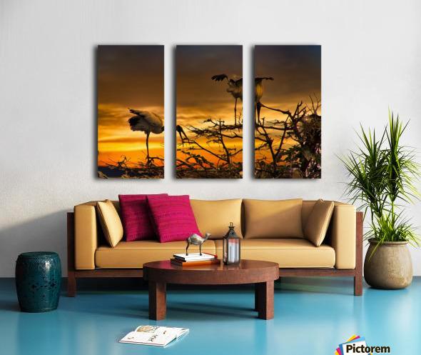 Wood Storks at Sunset Split Canvas print