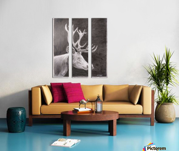 Stag_DKS Split Canvas print