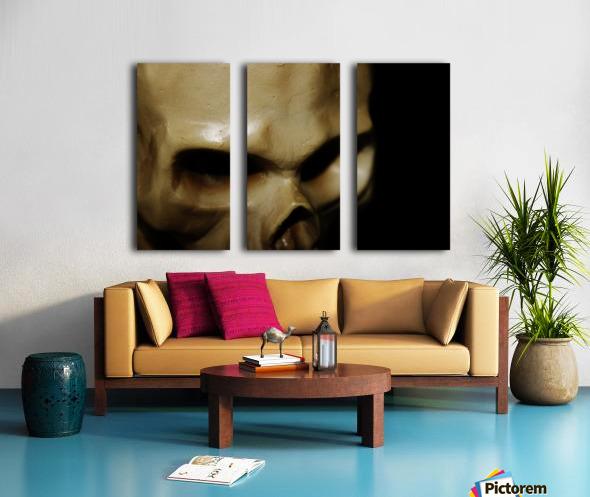 Skeleton Head Split Canvas print