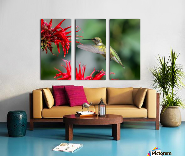 The Happy Bird Split Canvas print