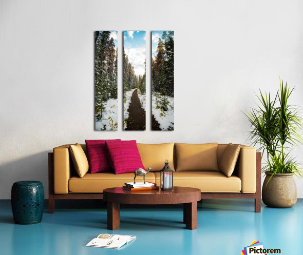 Winter Path Split Canvas print