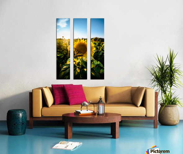 Sunflower Love Split Canvas print