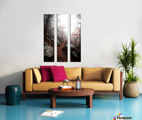 Moody Forest Split Canvas print