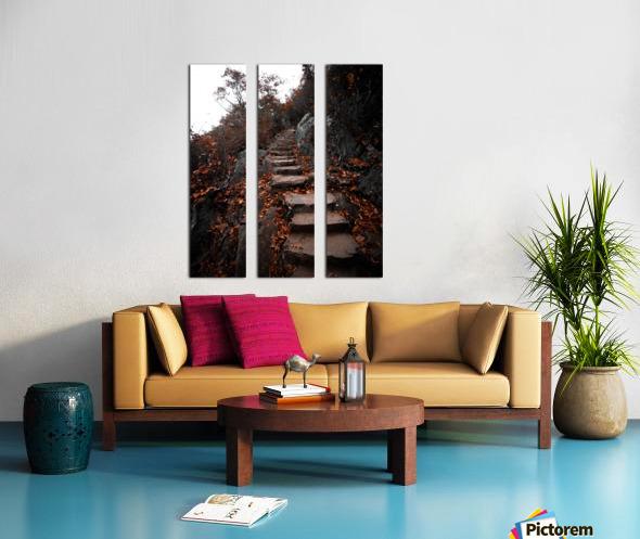 Autumn Path Split Canvas print