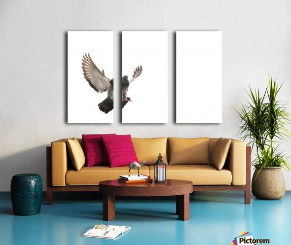 Take Flight Split Canvas print
