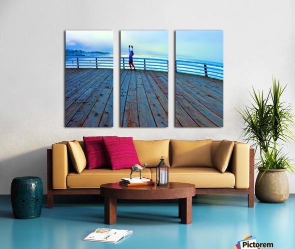 IMG_6973 Split Canvas print
