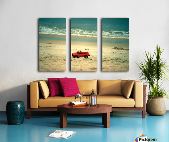 Picture273 Split Canvas print