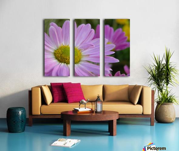 Floral Photograph  Split Canvas print