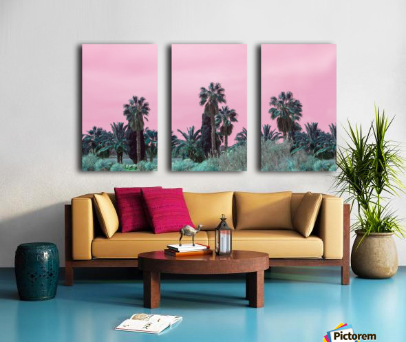 Pink Sky Split Canvas print