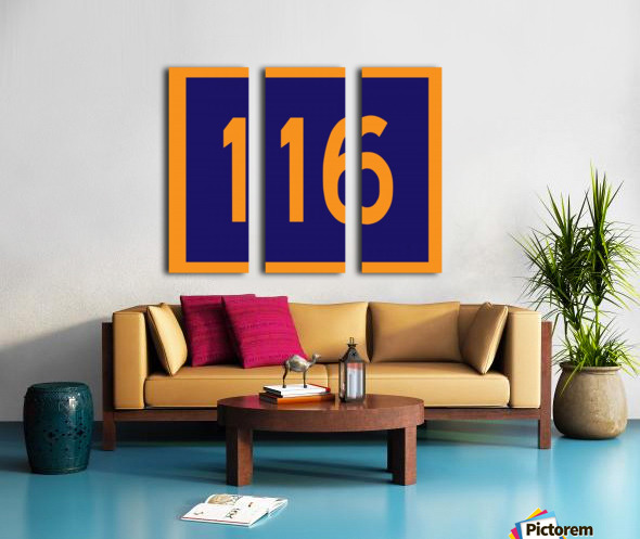 Number 116 Split Canvas print