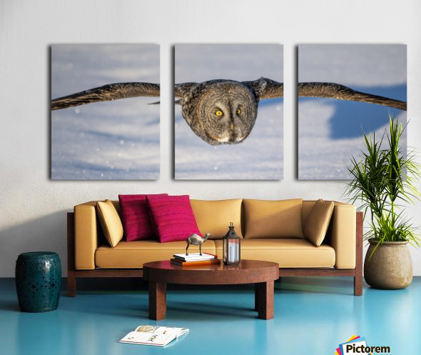 How Low Can you Go Split Canvas print