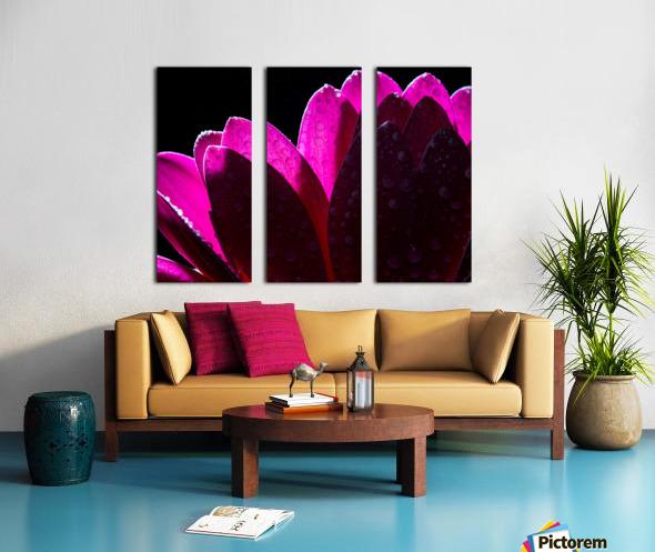 In The Light Split Canvas print