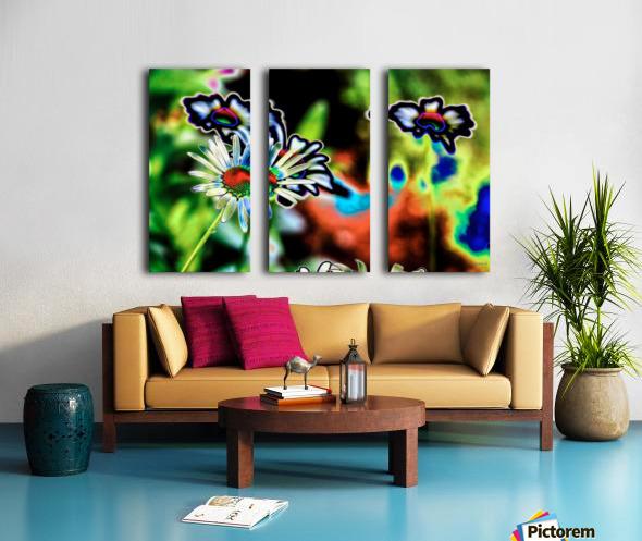Petales- Collection EXC-S Split Canvas print