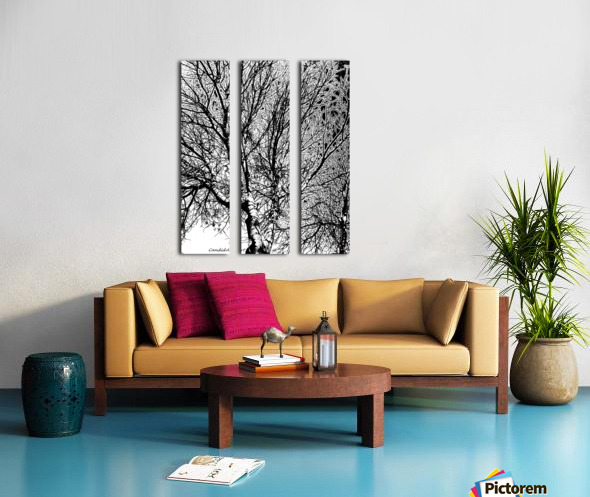 Afridaizy Black & White Trees Threshold029 Split Canvas print