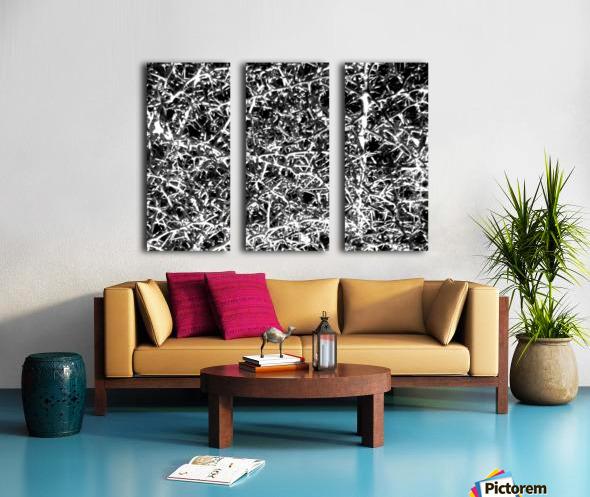 Black & White Nature Split Canvas print