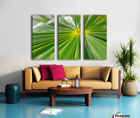 Beautiful Green Split Canvas print