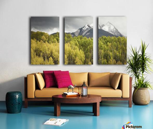 Kebler Pass  Split Canvas print