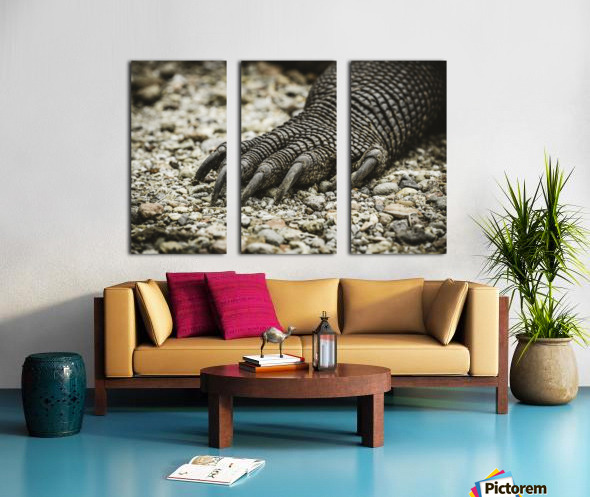 Dragons Claw Split Canvas print