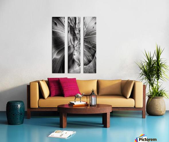 B&W Zebra Slot Canyon I Split Canvas print