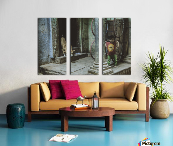 Varanasi girl and dog Split Canvas print