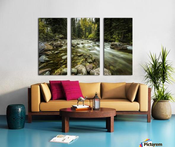 Rocky Mountain Stream Split Canvas print