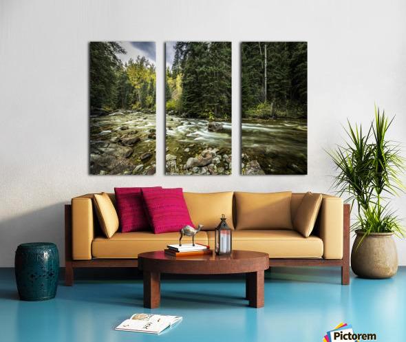 Rocky Mountain Forest Split Canvas print